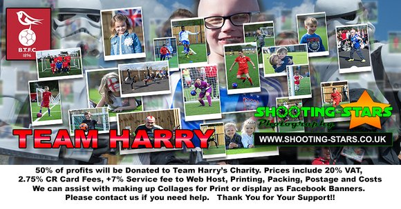 BTFC Harry Site Banner
